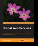 Веб-сервисы Друпал
