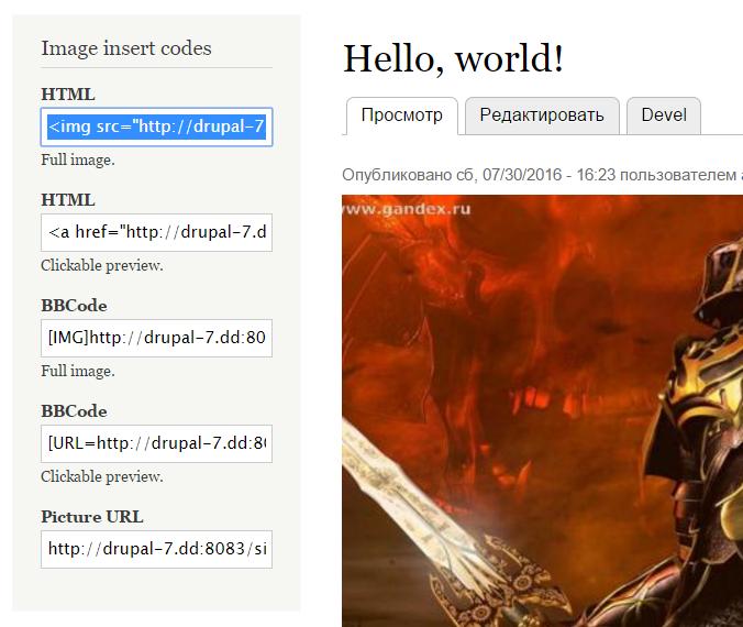 Image Insert Codes